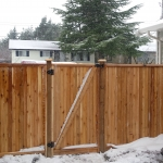 Custom cedar panel fence with gate.